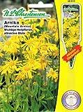 Arnika wichtige Heilpflanze attraktive Blüte Arnica montana