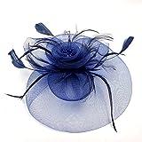 JZK Dame Vintage Fascinator Blume Kopfbedeckung Kopfstück Feder Haar Zubehör mit Clip & Stirnband, Elegant Haarschmuck hut für Cocktail Party Hochzeit (Schleier, dunkelblau) Vergleich