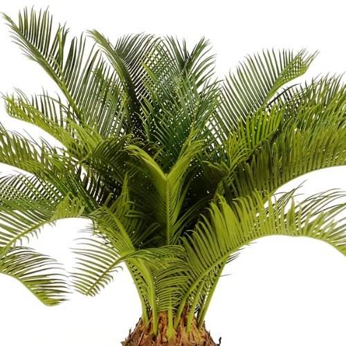 artplants – Künstliche Cycas Palme Matthew mit 22 Palmwedeln, Deluxe, 70 cm – Japanischer Deko Palmfarn/Zimmer Palm Baum