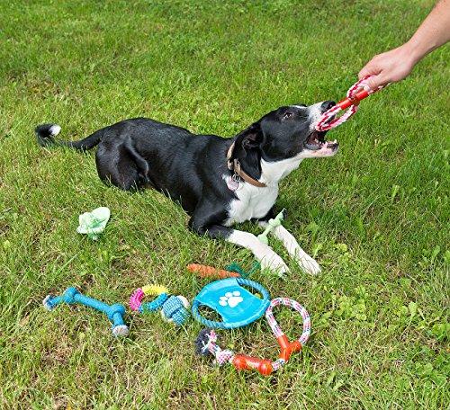 Sweetypet Wurfspiel für den Hund: 10er-Set Bunte Hundespielzeuge aus Baumwolle zum Kauen und Toben (Hunde-Spielzeugset) - 4