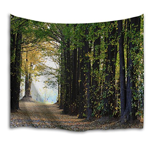 5 X Schneller Fett (QIYI innere wand hängen natur-kunst polyester-gewebe wandteppich für studentenzimmer,schlafzimmer,wohnzimmer und 203cmx153cm-Forest 5)