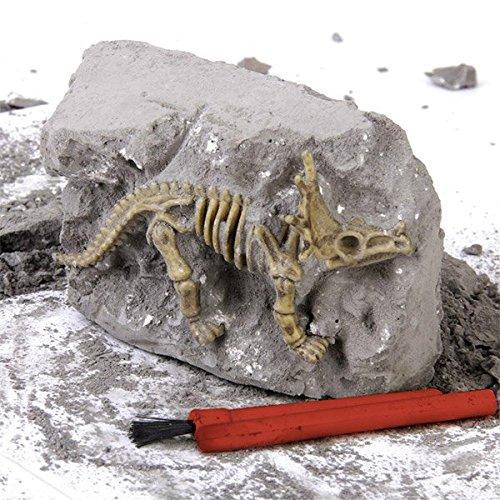 Ausgrabungsset 'Dinosaurier Skelett'