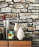 NEWROOM Papier peint pierres brique gris mur pierre moderne papier marron Loft Industriel