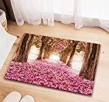 #4: Fashion Hub™ 3D Printed Non-Slip Door Mat Set - 16 x 24 Inch 40 * 60 cm, Multicolour