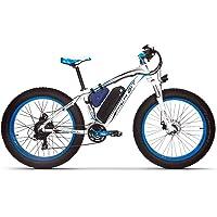RICH BIT-SBX RT-022 Ebike Alles Gelände Strandkreuzer Power Assisted Fat Tire Fahrrad Schnee Berg