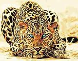 DIY Vorgedruckt Leinwand-Ölgemälde Geschenk für Erwachsene Kinder Malen Nach Zahlen Kits Mit Holzrahmen Home Haus Dekor - Blauer Augen-Leopard 15.75 * 19.69 inch