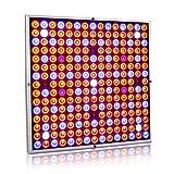 Exmate 45W LED wachsen Licht für Indoor Plant Growing mit 225 LEDs Vollspektrum wachsen Lampe UV und IR für Gewächshaus Vegetative Herb Sukkulenten Hydroponic Sämlinge