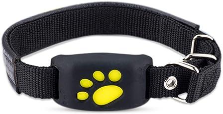 PETCUTE Trackers für Hunde und Katzen, GPS Halsband Katze, GPS Tracker Hunde