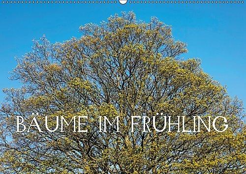 bume-im-frhling-ch-version-wandkalender-2017-din-a2-quer-blhende-bume-in-voller-pracht-im-frhjahr-mo
