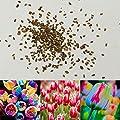 TOPmountain Tulip Blumensamen 100 Stück Gemischte Tulpenzwiebeln Garten Balkon Pflanzen Samen Dekor von TOPmountain - Du und dein Garten
