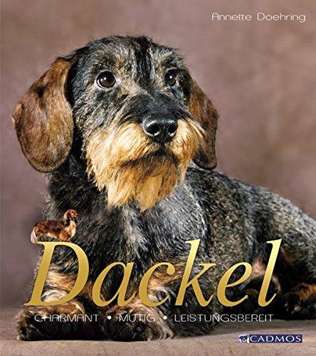 Dackel: Kleiner Hund mit großem Herz (Cadmos Hunderassen)