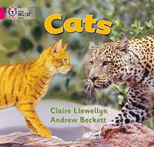 Cats: Band 01B/Pink B (Collins Big Cat) por Claire Llewellyn