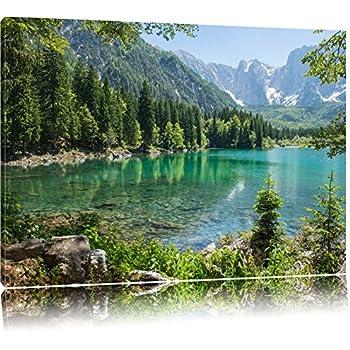 Amazon.de: Wunderschöner See im Wald Format: 100x70 auf