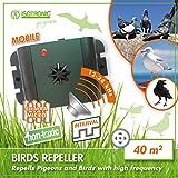 ISOTRONIC dispositivi di allontanamento uccelli a batteria a ultrasuoni saccia piccioni per balconi finestre e alberi da frutta anche per allontanare da automobili e giardini