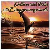 Delfine und Wale mit Entspannungsmusik