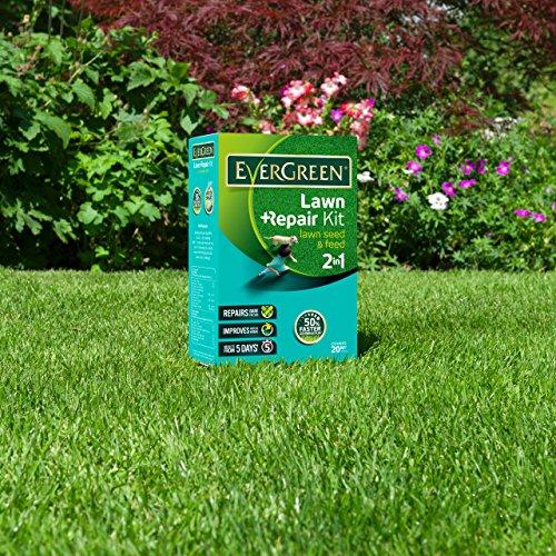 Zoom IMG-3 kit di riparazione per erba