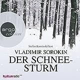 Der Schneesturm von Vladimir Sorokin