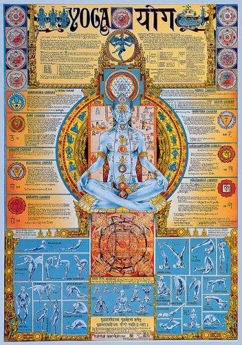Educational - Bildung Yoga Bildungsposter Plakat Druck - Version in Englisch - Grösse 68x98 cm