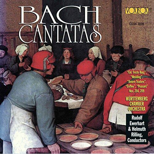 Weichet nur, betrübte Schatten, BWV 202 'Wedding Cantata: VII. Sich üben im Lieben