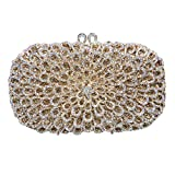 Bonjanvye Glitter Floral Purse Bling Party Handbags for Ladies AB Gold
