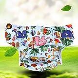 Adult Diaper Pants incontinenza pannolino, regolabile lavabile doppia apertura tasca riutilizzabile Leakfree inserto panno pannolini per disabilità Care, vita Range 28~ 119,4cm
