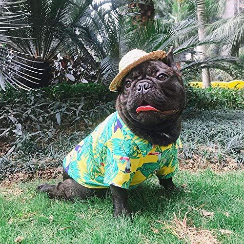 YOUDirect Hawaii-Shirt für Hunde, Sommer-T-Shirt, Welpen, Hawaiianische Brise am Meer, Resort-Stil, Französische Bulldogge, Mops, L, gelb - Gelbe Hawaii-shirt