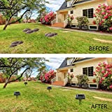 Ultrasonic Solar-Powered Mole Repellent Professional Mole 2PCS Repeller Pest Deterrent Repelling Mole, Rodent