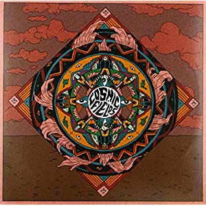 Cosmic Fields [Vinyl LP]