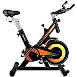 gridinlux. Trainer Alpine 6000. Bicicleta estática Ciclo Indoor. Volante de Inercia 10 kg, Nivel Avanzado, Sistema de Absorci