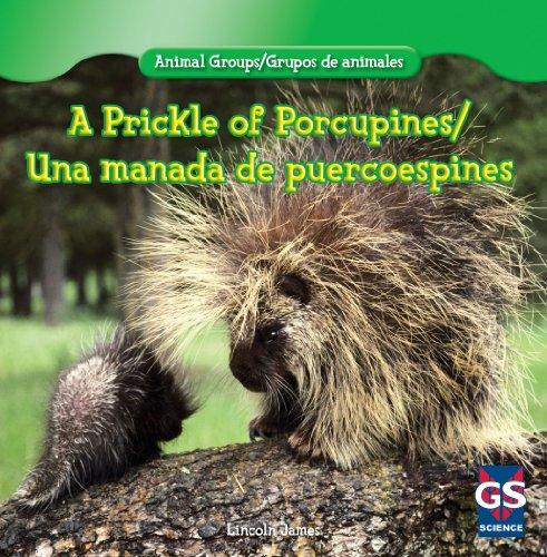 A Prickle of Porcupines/Una manada de puercoespines (Animal Groups/Grupos de animales)