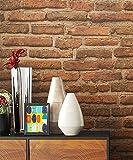 Steintapete Vlies Rot Braun Natur Stein | schöne edle Tapete im Steinmauer Design | moderne 3D Optik für Wohnzimmer, Schlafzimmer oder Küche inkl. Newroom Tapezier Profibroschüre mit super Tipps!