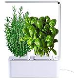 amzWOW Smart Garden Huerto de Interior 100% Eco, para Cultivar Plantas aromaticas Semillas Bio, Plantas Naturales Interior -L