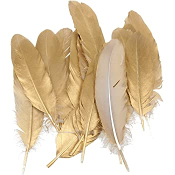 MagiDeal Pack of 12 Natural Goose Feather 15-20CM/5.9-7.9inch Party Decoration Gold