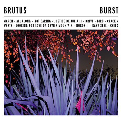 Burst (Black Vinyl) [Vinyl LP]