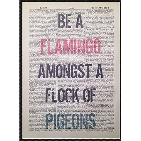 Stampa vintage su motivo pagina di dizionario, frase in inglese su fenicottero e piccioni