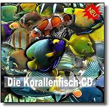 Die Korallenfisch-CD: Eine Einführung in die Welt der Korallenfische
