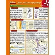 Lerntafel: Neuro- und Sinnesphysiologie im Überblick (Lerntafeln Biologie)