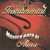 Colección de Adoración Música para el Alma, Vol. 1