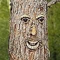 Pötschke Ambiente Gartendeko Baumgesicht Karl Kiefer von Pötschke Ambiente auf Du und dein Garten
