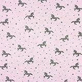 Fabulous Fabrics Sommersweat Glitzer Einhorn 4 – lila — Meterware ab 0,5m — Oeko-Tex Standard 100 — zum Nähen von Kinderbekleidung und Sweatshirts