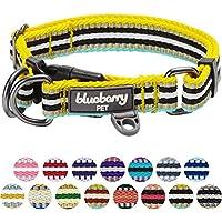 [Gesponsert]Blueberry Pet 2cm M 3M Reflektierendes Bunt Gestreiftes Gelb und Azurblaue Hundehalsband für Mittelgroße Hunde