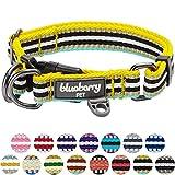 Blueberry Pet 2,5cm L 3M Reflektierendes Bunt Gestreiftes Gelb und Azurblaue Hundehalsband für Große Hunde