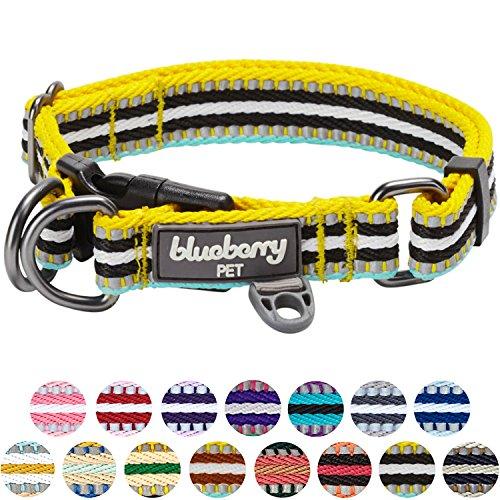 Blueberry Pet 2cm M 3M Reflektierendes Bunt Gestreiftes Gelb und Azurblaue Hundehalsband für Mittelgroße Hunde -