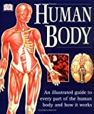 Human Body (Illustrated Guide)
