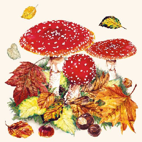 Papierservietten - Servietten Lunch/Party/ca. 33x33cm Herbst - Autumn - Fly Agaric - Pilze - Herbst-Motive - Halloween Tisch-Deko