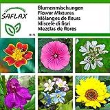 SAFLAX - Fiori commestibili - 100 g di aiuto per le sementi e la semina