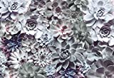 Fototapete 8-962 SHADES 368x254cm Blüten Staude Blumen Sukkulenten Coloriert
