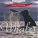 Whales (CD)