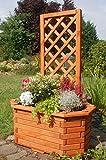 Deko-Shop-Hannusch Pflanzkasten, Blumenkasten, Blumenkübel aus massivem Holz mit schön gearbeiteter Pergola, für den Garten, Farbe:Braun