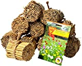 Luxus-Insektenhotels 22690e Schilfrohrhalme Set plus Samenmischung 'Bienenparadies', 35 Sorten,...